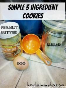 Simple 3 ingredient cookies