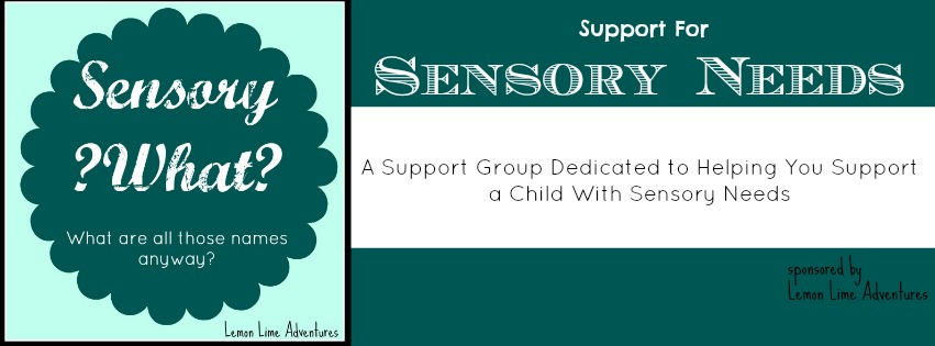 Sensory Needs Group