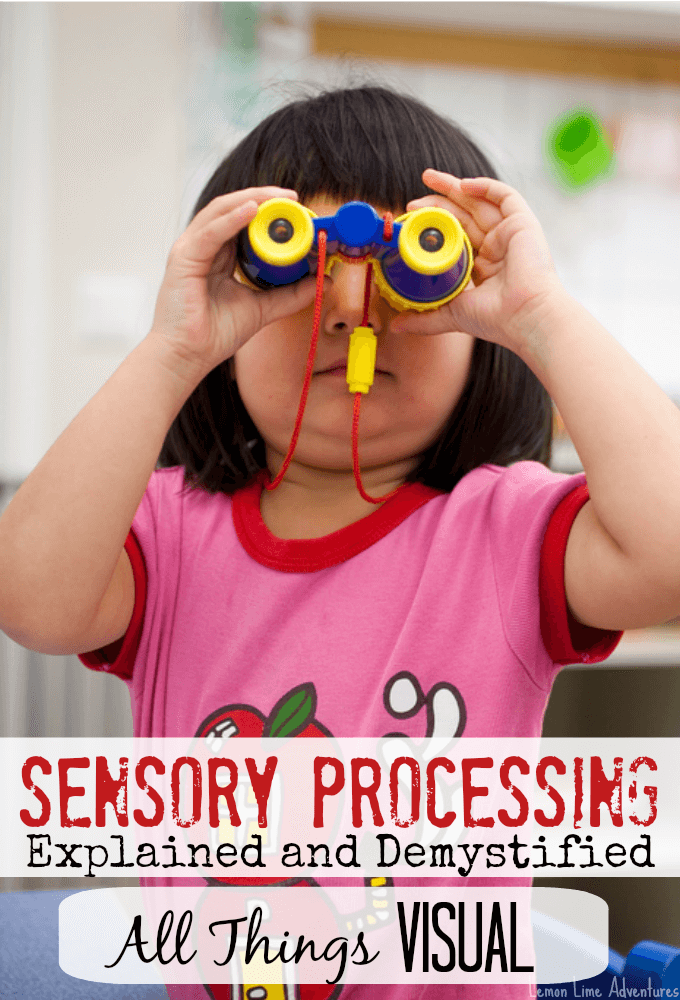 Sensory Processing Explained Visual Input