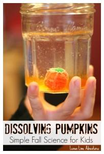 Dissolving Pumpkin Candy Experiments