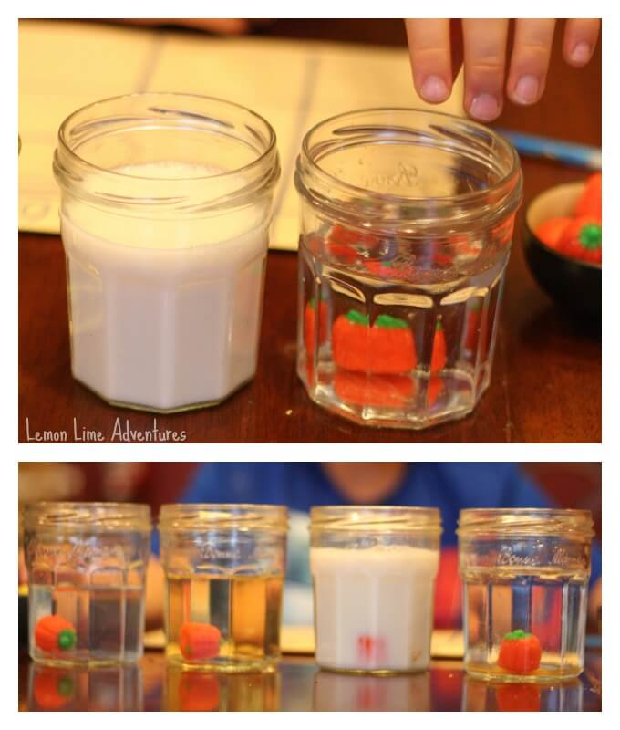 Halloween Science Experiment for Kids