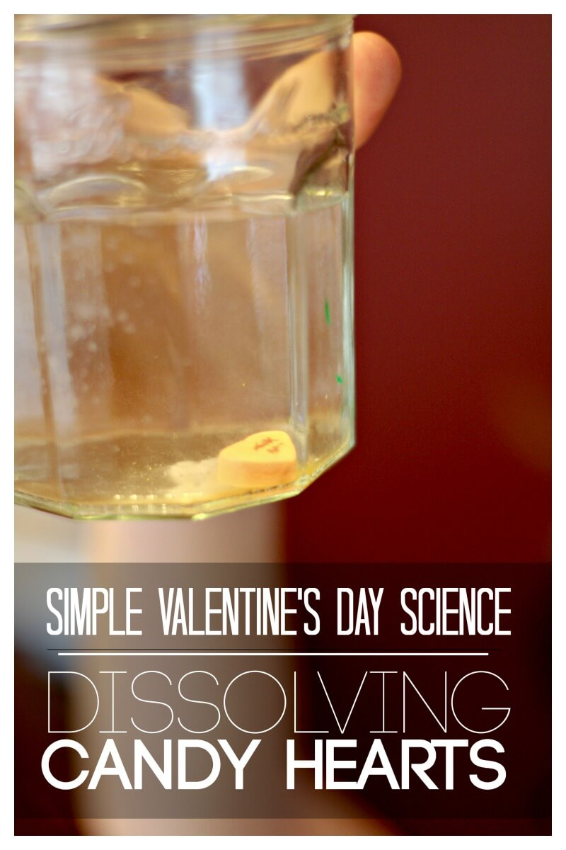 Dissolving Candy Hearts Simple Valentines Day Science