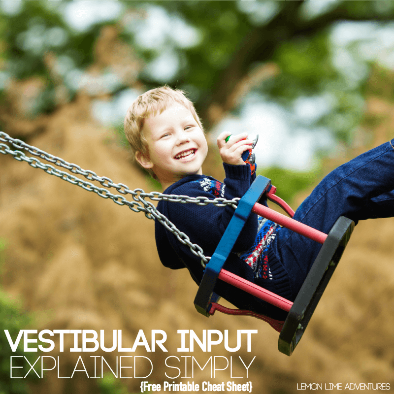 Vestibular Input Explained Simply
