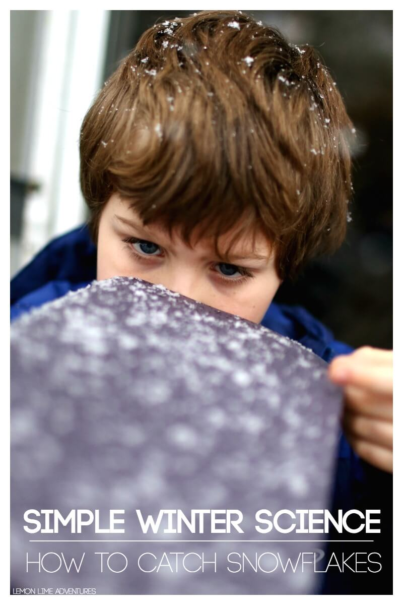 How to Catch Snowflakes in the Winter with Kids