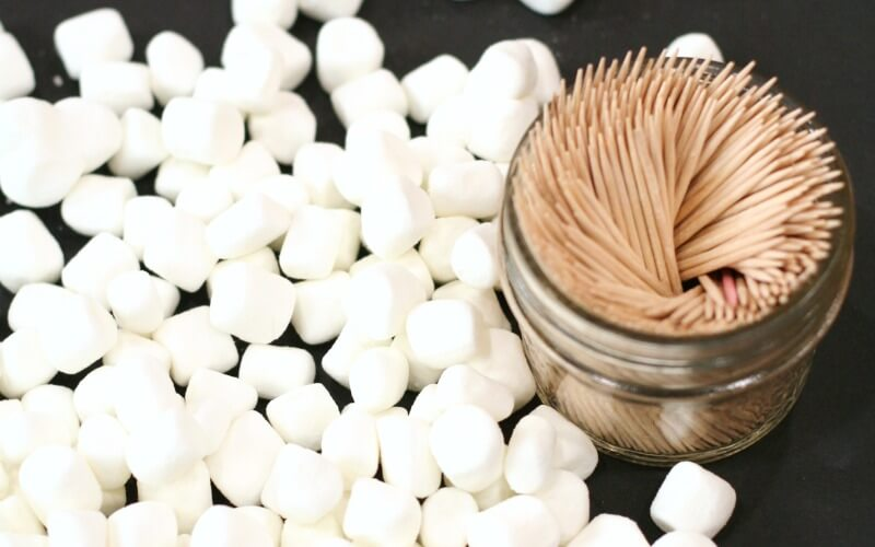 Materials for Building Igloos with Marshmallows