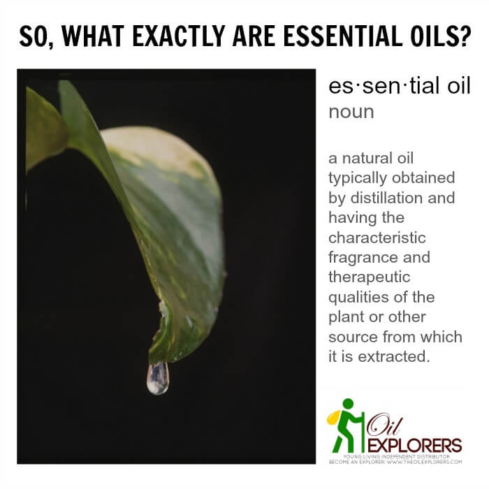 What_are_Essential_Oils (1)