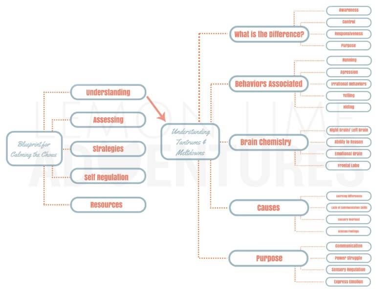 Blueprint for Understanding Tantrums and Meltdowns