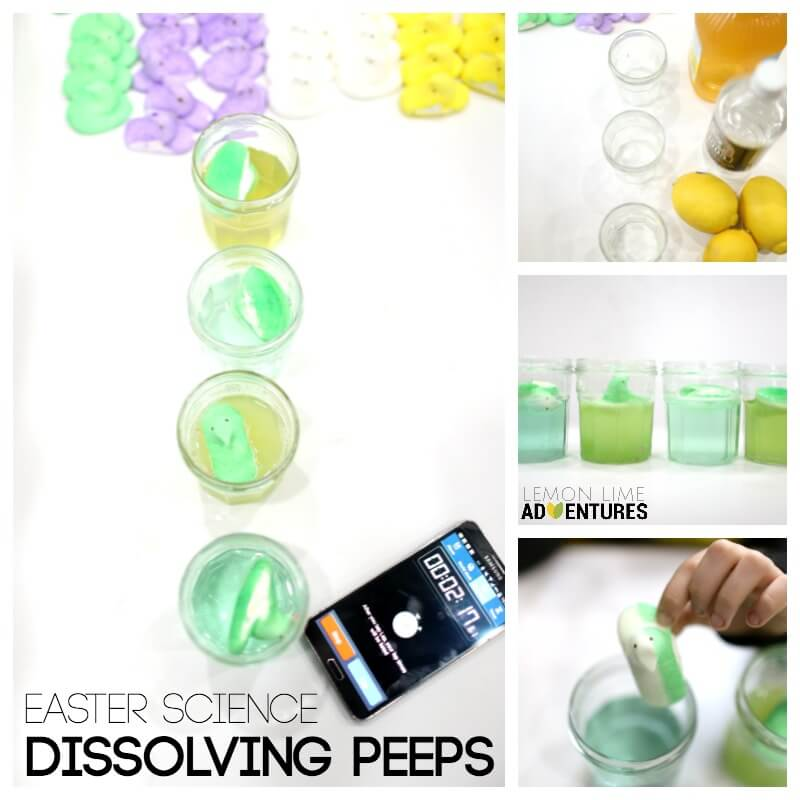 Easter Science Dissolving Peeps for a whole week
