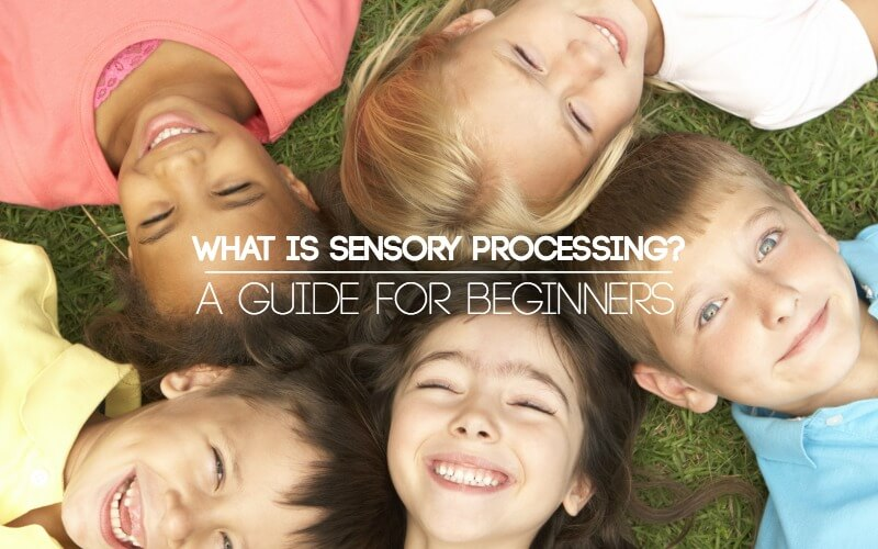 The Newbie's Guide to Sensory Processing | A Basic Overview