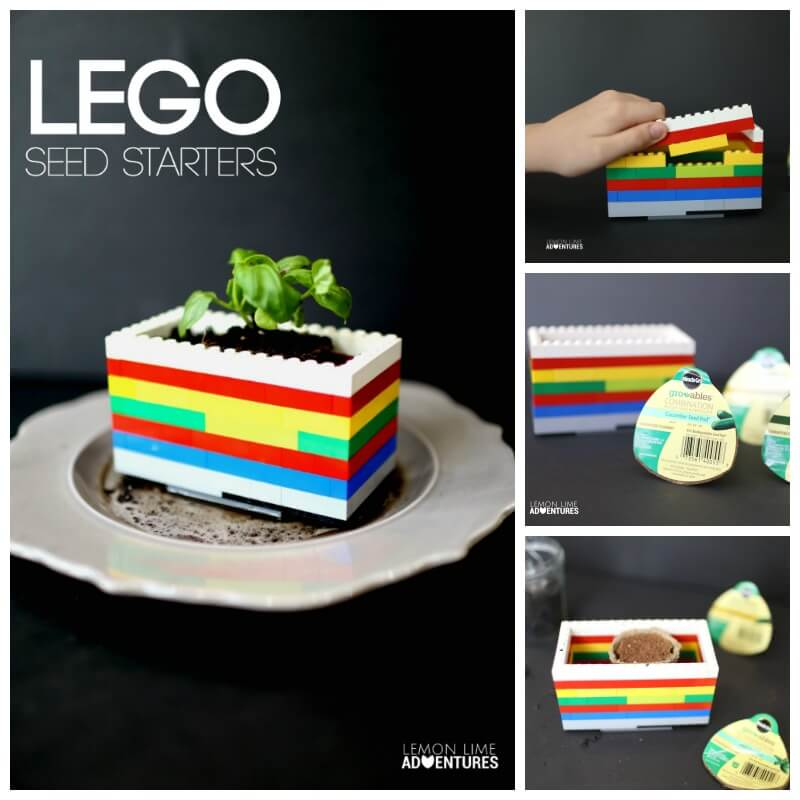 Lego Seed Starters Sets