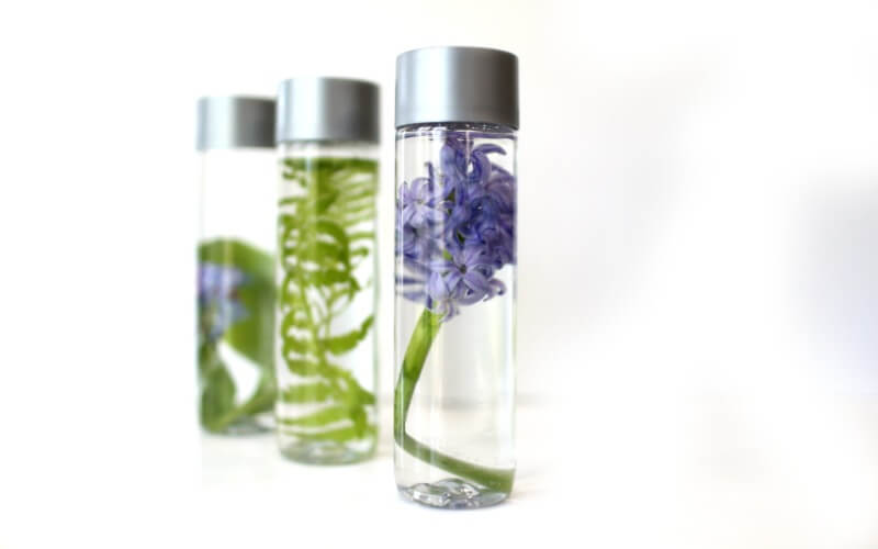 Simple Spring Nature Sensory Bottles
