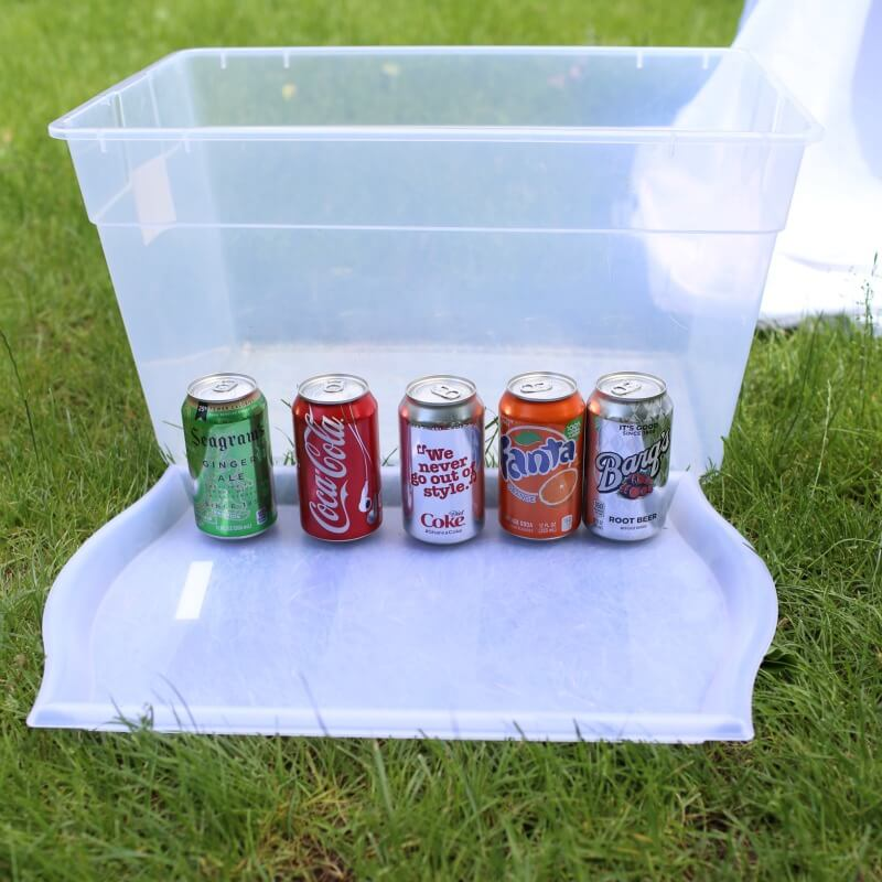 Surprise Soda Experiment Sink or Float