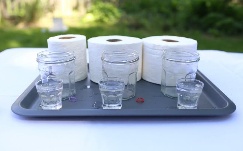 Toilet Paper Experiment Setup