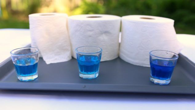Toilet Paper Science Experiments