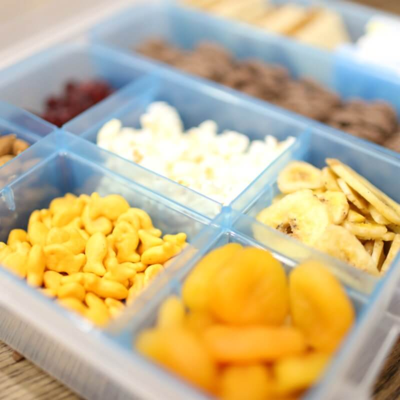 Road Trip Snack Kit for Toddlers