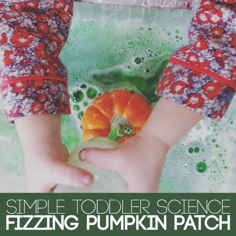 simple-toddler-science-pumpkin-patch