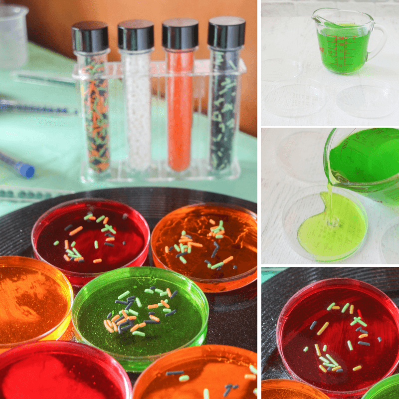 Fun and Creepy Petri Dish Jell-o!