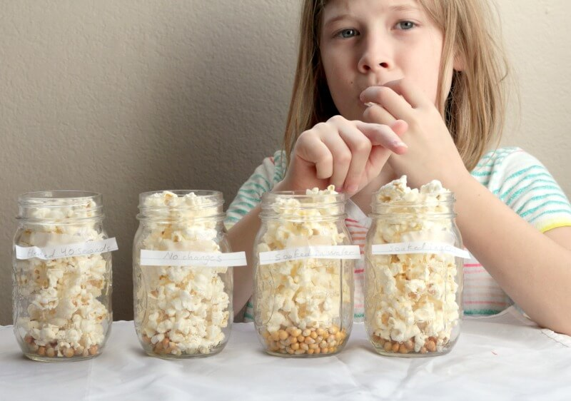 Popcorn Science STEM Investigation: Tasty Science Fun!