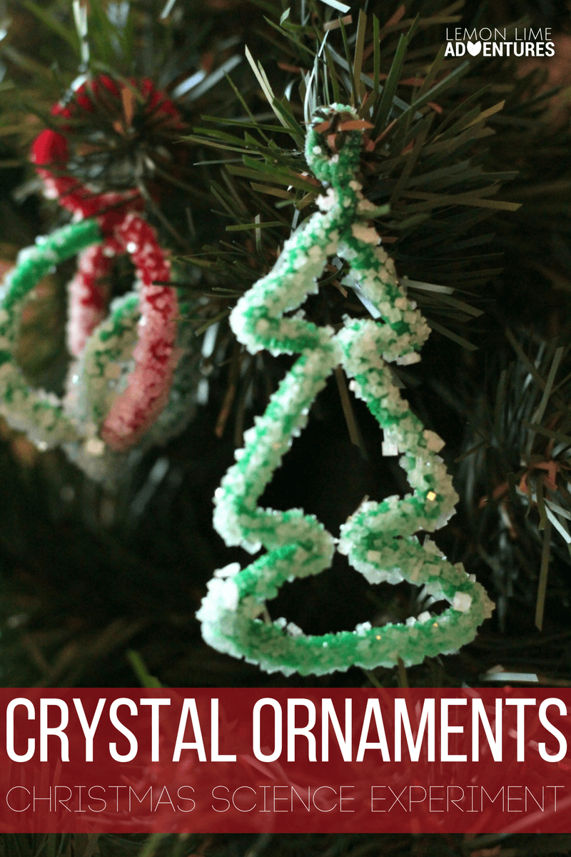 Combine Christmas with learning in this fun salt crystal ornaments science experiment that you can hang on your Christmas tree!