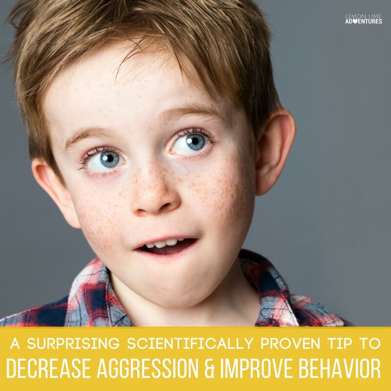 A Surprising Scientifically proven tip to decrease aggression and improve behavior