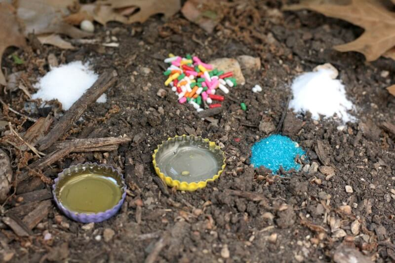 Ever wonder what sweetener ants prefer? This simple science experiment will help you find the answer to that question in a fun hands-on way!